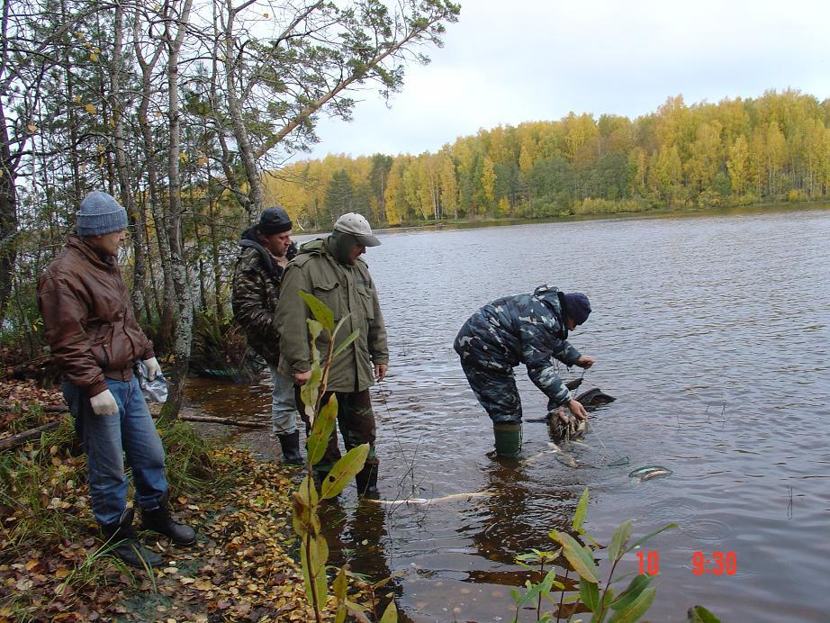 рыбалку найди
